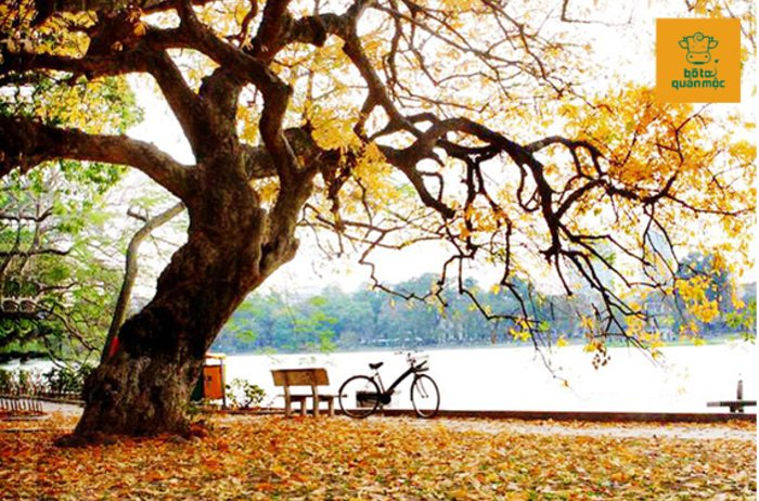 Hà Nội tháng 11 và những điều bạn không thể bỏ lỡ